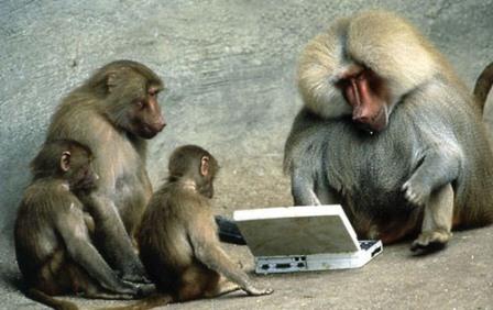monos conectados